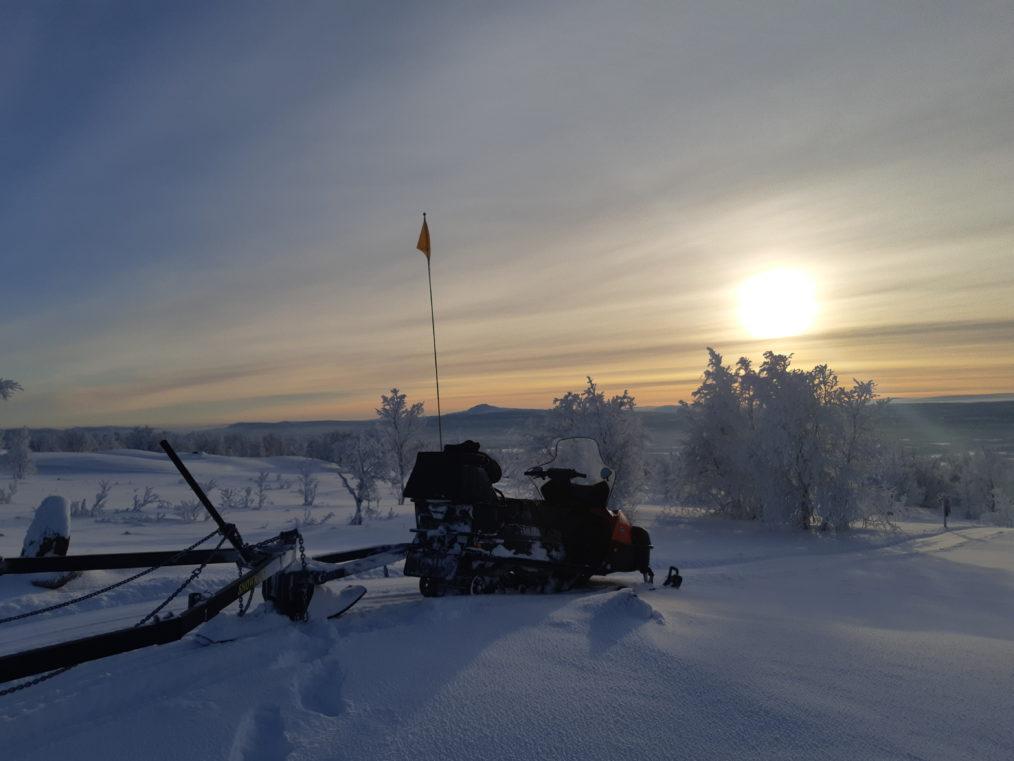 Leden Mot Laisvall idag